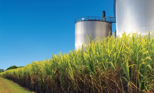 Imagem ilustrativa da notícia: Senado diz sim à venda direta de etanol