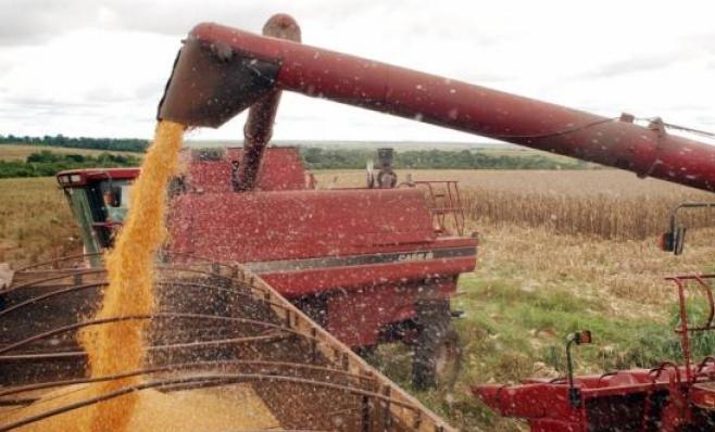 Imagem ilustrativa da notícia: Próxima safra de grãos será 6,8% menor do que a de 2107