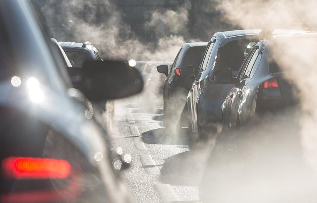 Imagem ilustrativa da notícia: Como compensar toda a emissão de CO2 do seu carro gastando apenas R$ 200