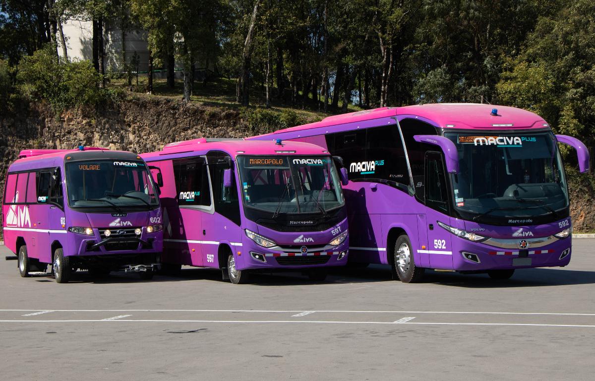 Imagem ilustrativa da notícia: Marcopolo entrega 32 ônibus para o Grupo Civa, do Peru