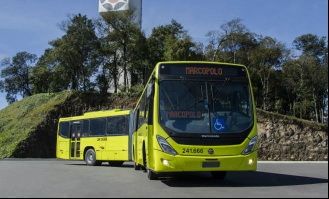 Imagem ilustrativa da notícia: Marcopolo amplia sua participação no mercado de ônibus