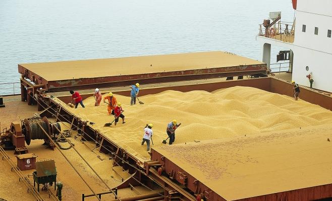 Imagem ilustrativa da notícia: Indústria de máquinas e implementos agrícolas cresce 10,6% até outubro