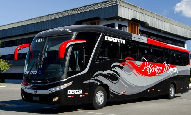 Imagem ilustrativa da notícia: Marcopolo entrega 22 ônibus para Pássaro Marron