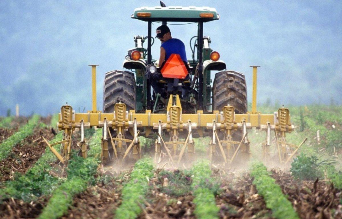 Imagem ilustrativa da notícia: Venda de máquinas cresce, mas produção e exportação caem