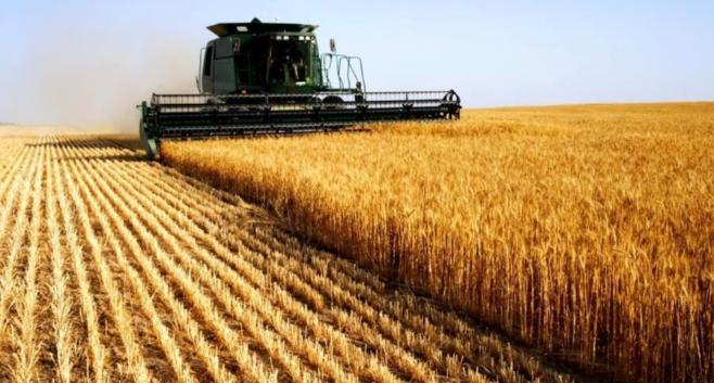 Imagem ilustrativa da notícia: Vendas de máquinas agrícolas crescem 35%