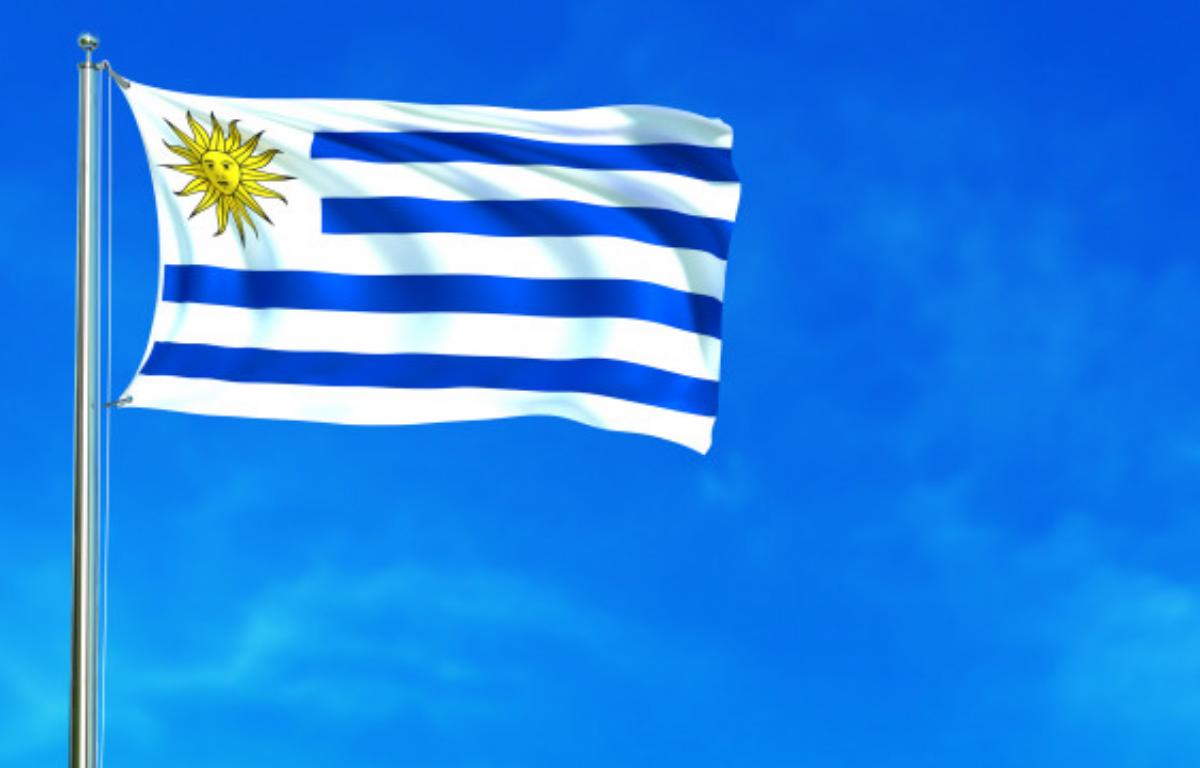 Imagem ilustrativa da notícia: Vendas no Uruguai caem 15% em 2020