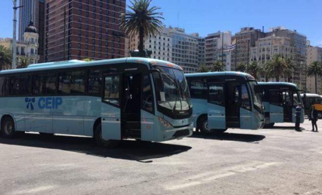 Imagem ilustrativa da notícia: Ônibus da Volkswagen no Uruguai